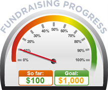 Fundraising Amount=$100.00 ; Goal=$1,000.00