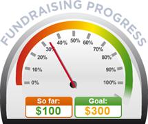 Fundraising Amount=$100.00 ; Goal=$300.00