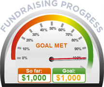 Fundraising Amount=$1,000.00 ; Goal=$1,000.00