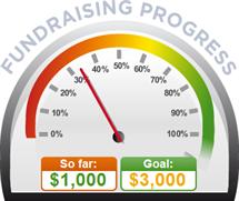Fundraising Amount=$1,000.00 ; Goal=$3,000.00
