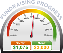 Fundraising Amount=$1,075.00 ; Goal=$2,000.00
