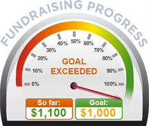 Fundraising Amount=$1,100.00 ; Goal=$1,000.00
