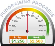Fundraising Amount=$1,256.00 ; Goal=$2,500.00