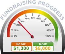 Fundraising Amount=$1,300.00 ; Goal=$5,000.00