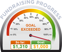 Fundraising Amount=$1,310.00 ; Goal=$1,000.00