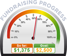 Fundraising Amount=$1,375.00 ; Goal=$2,500.00