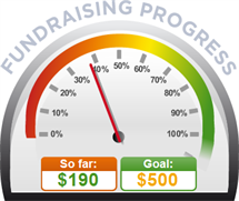 Fundraising Amount=$190.00 ; Goal=$500.00