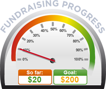 Fundraising Amount=$20.00 ; Goal=$200.00