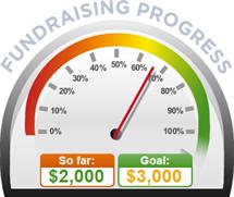 Fundraising Amount=$2,000.00 ; Goal=$3,000.00