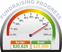 Fundraising Amount=$20,625.00 ; Goal=$25,000.00