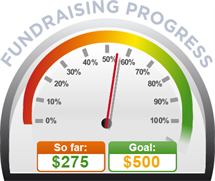 Fundraising Amount=$275.00 ; Goal=$500.00