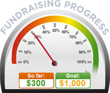 Fundraising Amount=$300.00 ; Goal=$1,000.00