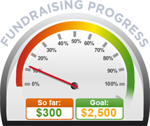 Fundraising Amount=$300.00 ; Goal=$2,500.00