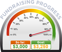 Fundraising Amount=$3,000.00 ; Goal=$3,250.00