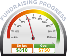 Fundraising Amount=$310.00 ; Goal=$750.00