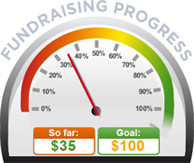 Fundraising Amount=$35.00 ; Goal=$100.00