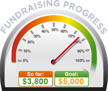 Fundraising Amount=$3,800.00 ; Goal=$5,000.00