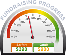 Fundraising Amount=$390.00 ; Goal=$900.00