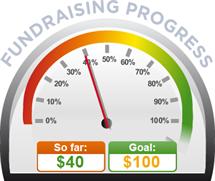 Fundraising Amount=$40.00 ; Goal=$100.00