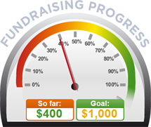 Fundraising Amount=$400.00 ; Goal=$1,000.00