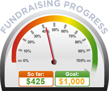 Fundraising Amount=$425.00 ; Goal=$1,000.00