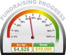 Fundraising Amount=$4,525.00 ; Goal=$10,000.00