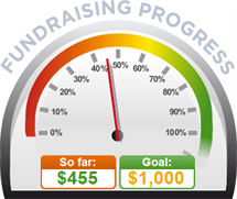 Fundraising Amount=$455.00 ; Goal=$1,000.00