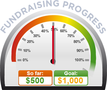 Fundraising Amount=$500.00 ; Goal=$1,000.00