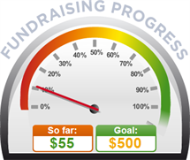 Fundraising Amount=$55.00 ; Goal=$500.00