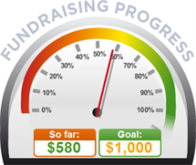 Fundraising Amount=$580.00 ; Goal=$1,000.00