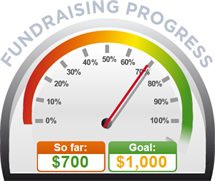 Fundraising Amount=$700.00 ; Goal=$1,000.00