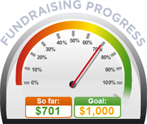 Fundraising Amount=$701.00 ; Goal=$1,000.00