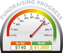 Fundraising Amount=$740.00 ; Goal=$1,000.00