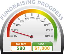 Fundraising Amount=$80.00 ; Goal=$1,000.00