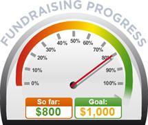 Fundraising Amount=$800.00 ; Goal=$1,000.00