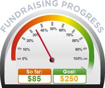 Fundraising Amount=$85.00 ; Goal=$250.00