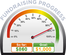 Fundraising Amount=$860.00 ; Goal=$1,000.00