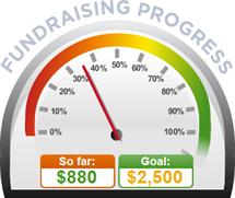 Fundraising Amount=$880.00 ; Goal=$2,500.00