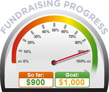 Fundraising Amount=$900.00 ; Goal=$1,000.00